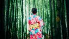 美しい日本の夏祭り